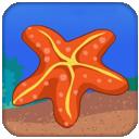 海底生物捉迷藏